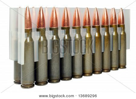 Hunting Cartridges Of Caliber  .308 Win With A Shell Bullet