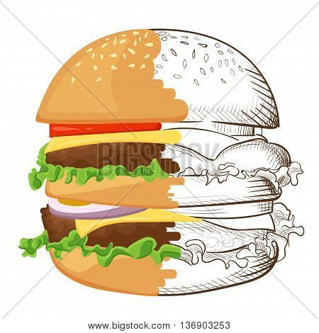 llustration of hand drawn burger. Hamburger Cheeseburger . Vector isolated on white background. Tasty Vector illustrations. Tomato cheese salad.