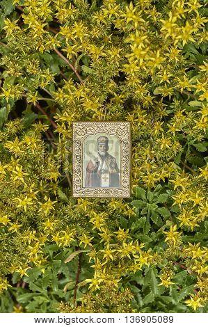 Saint Nicholas icon on yellow blossom close up