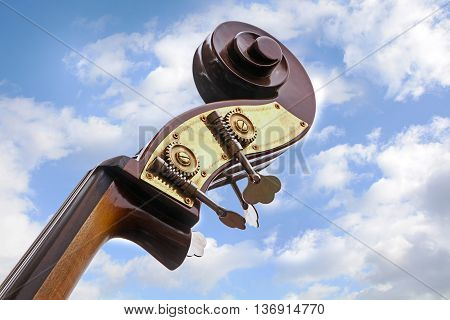 double bass detail of the music instrument neck head with tuning pegs and scroll against a blue sky with clouds view from below copy space