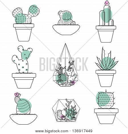 Set of succulent plants and cactus in pots and glass terrariums. Line botanical vector icons.Vector illustration.