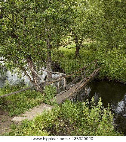 Shaky old bridge over a small river forest.