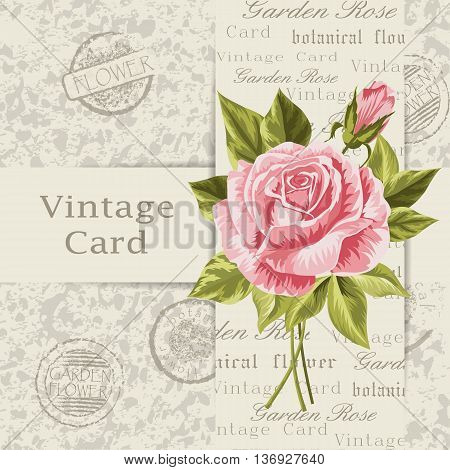 Beautiful flower for invitation card. Vintage postcard background. Vector illustration.