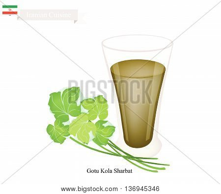 Iranian Cuisine Gotu Kola Sharbat or Traditional Drink Made From Gotu Kola Leaves and Aromatic Syrup. One of The Most Popular Drink in Iran..