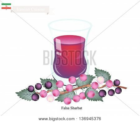 Iranian Cuisine Falsa Sharbat or Traditional Drink Made From Grewia Asiatica and Aromatic Syrup. One of The Most Famous Drink in Iran..