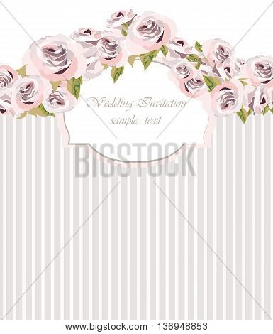 Watercolor pink Roses Flowers and stripes background. Vintage Watercolor Greeting Card with Blooming Roses. Vector Watercolor Roses for wedding invitation anniversary celebration events