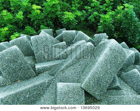 stones and shrubs