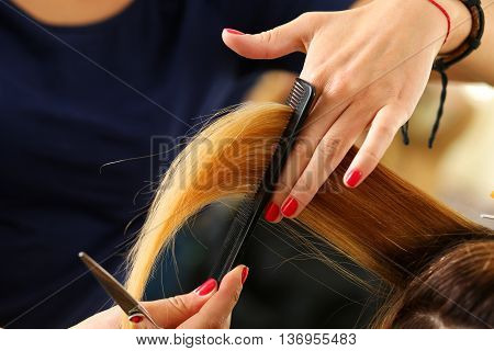 Female Hairdresser Hold In Hand Lock Of Blonde Hair