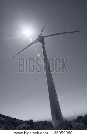 Wind Turbine power generator against the sun