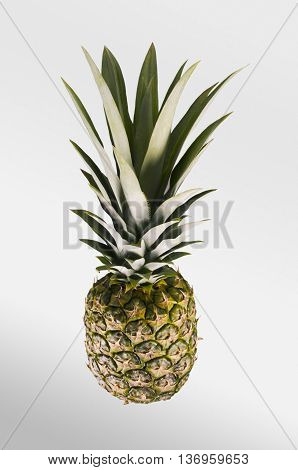 Pineapple. Tropical Fruit. Studio Shoot.