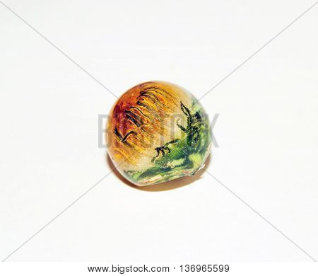 Dandelion In Epoxy Resin_3