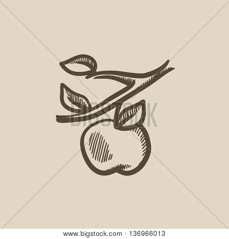 Apple harvest vector sketch icon isolated on background. Hand drawn Apple harvest icon. Apple harvest sketch icon for infographic, website or app.