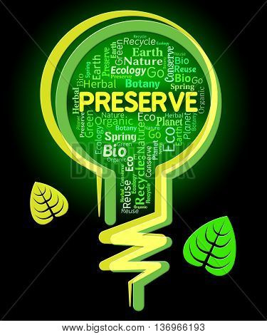 Preserve Lightbulb Shows Conserving Protecting And Rural