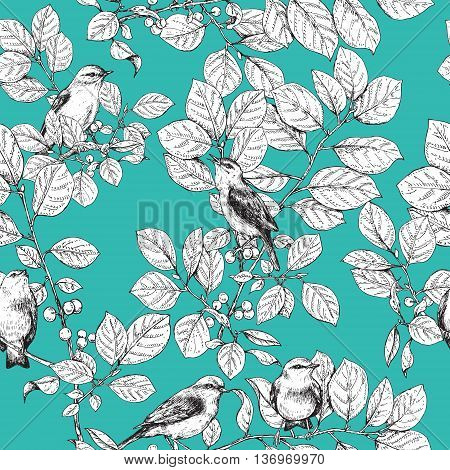 Hand drawn birds sitting on branches with leaves and berries. Black and white image of songbirds on turquoise background. Vector sketch. Seamless pattern.