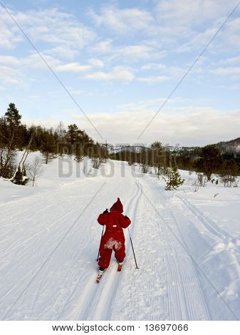 Child skiing cross country