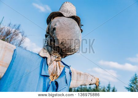 detail of a scarecrow at the garden at the countryside - focus on the head
