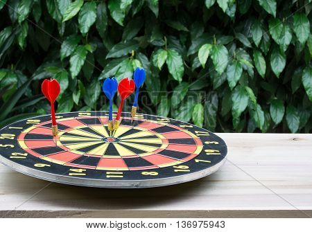 Dart is a competition and opportunity. Dartboard is be like as the target center and goal of business. therefor Bulls eyes of Dart board is both challengesuccessrisk managementgoalopportunity.