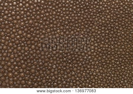 Genuine brown stingray skin closeup. Super macro Leather texture background.