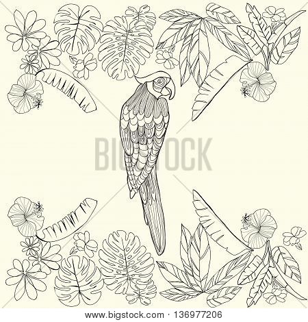 Vector hand drawn Tropical parrot and flowers leaves and space for text. Coloring book for adult Coloring page. Design element for card print template wallpaper texture.