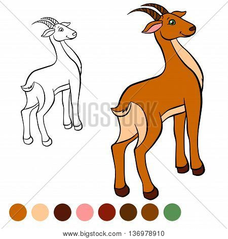 Coloring page. Color me: antelope. Little cute antelope stands and smiles.
