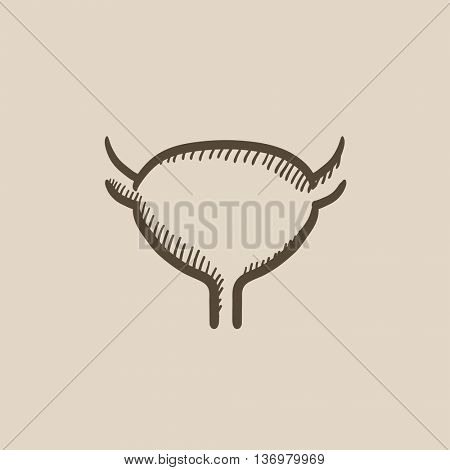 Urinary bladder vector sketch icon isolated on background. Hand drawn Urinary bladder icon. Urinary bladder sketch icon for infographic, website or app.