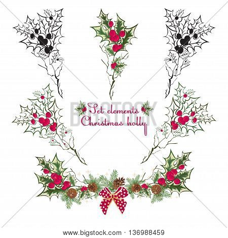 Set Hand drawing floral holly elementsVector illustration. Red and green