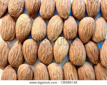 Almonds arranged in grid on white background