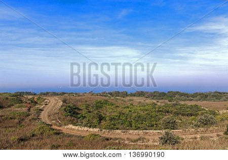 Coastal Dirt Road Winding Through Natural Vegetation Towards Ocean