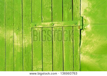 Old Bright Green Door Hinge