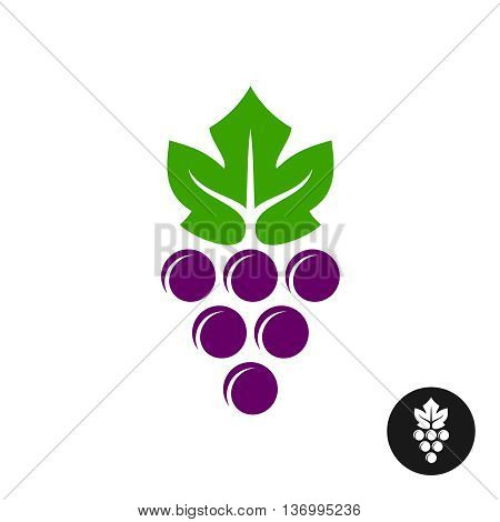 Grape logo. Violet grape berry with green leaf symbol. Wine sign.