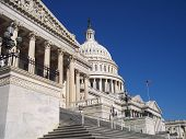 picture of stature  - the capitol building - JPG