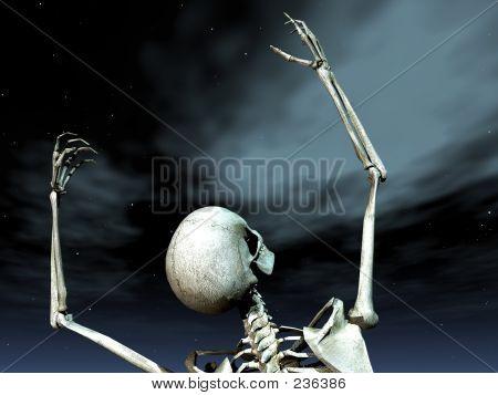 Bone Grave 7