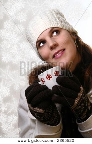 Belleza de Navidad