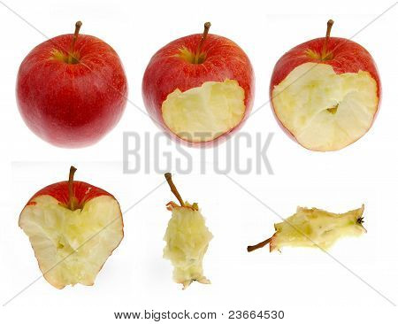 red apple collection