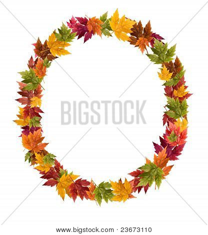 The letter O made from autumn maple tree leaves
