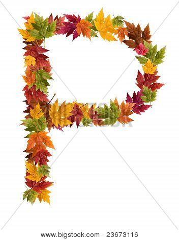 The letter P made from autumn maple tree leaves