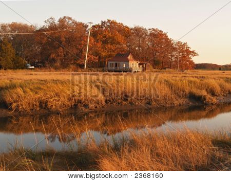 Autumn In New England; Salt Marshes