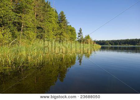 Lake Seliger Coast