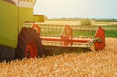 Combine Harvester Machine Harvesting Ripe Wheat Crops In Cultivated Agricultural Field, Selective Fo poster
