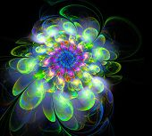 Abstract Fractal Futuristic Colourful Flower Pattern. 3d Render Illustration Of A Fractal. Art Fanta poster