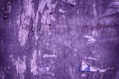 Ultra Purple Torn Poster After Vote On Tin Textured Wall Ripped Newspaper poster