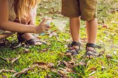 Mom And Son Use Mosquito Spray.spraying Insect Repellent On Skin Outdoor. poster