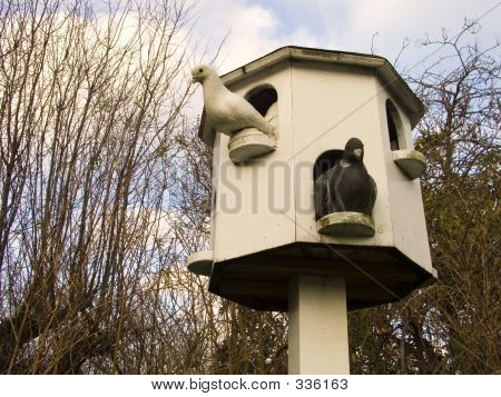 Doves And Dovecote