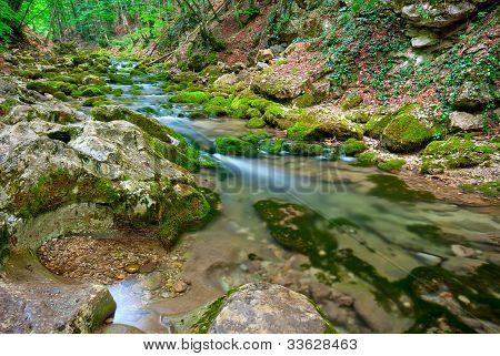 A Small Mountain Stream