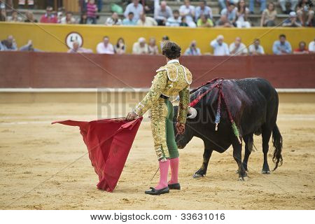 Bullfighter Fighting.