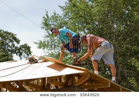 Carpenters Nailing Plywood