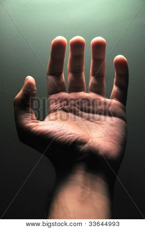 Hand Of A Male