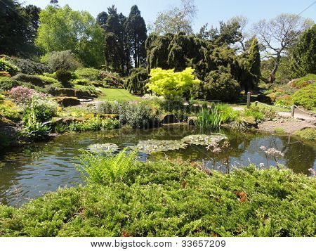 Japanies garden