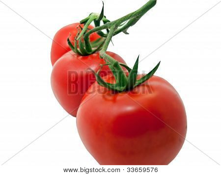 Three tomatoes close up