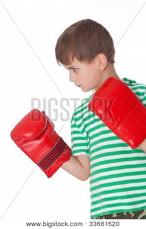 Angry Boy Pugilist